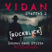 Staffel 2, Rückblick von Vidan