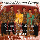 Sepanjang Jalan Kenangan - Sweet Indonesian Memories, Vol. 1 by Tropical Sound Group