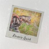 Reverie Quirk de Various Artists