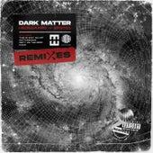 DARK MATTER (Remixes) by Stine Bramsen