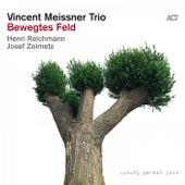 Bewegtes Feld by Vincent Meissner