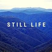 Still Life by Jonathan Daiane