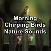 Morning Chirping Birds Nature Sounds de Spa Relax Music