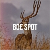 Boe Spot by Various Artists