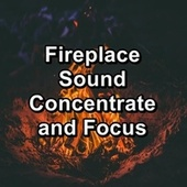 Fireplace Sound Concentrate and Focus by S.P.A