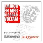 Amikor Én Még Kissrác Voltam - Illés by Various Artists