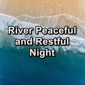 River Peaceful and Restful Night by Ocean Live