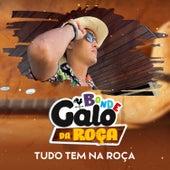 Tudo Tem na Roça (Brega Funk) by Bonde Galo Da Roça