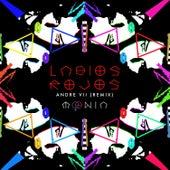 Labios Rojos (Andre VII Remix) von Moenia