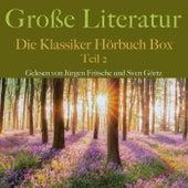 Große Literatur: Die Klassiker Hörbuch Box (Teil 2) by Franz Kafka