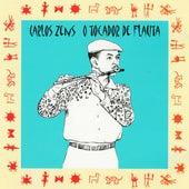 O Tocador de Flauta von Carlos Zens