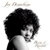 Born & Raised von Joy Denalane