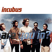 Are You In? by Incubus