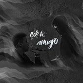 Ser Tu Amigo by Raul centurión