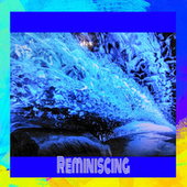 Reminiscing (Cover) by Richie Castellano