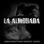 La Almohada de Camilo Puinn