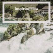 Inspiring Flow de Various Artists