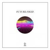 Future/Deep, Vol. 20 de Various Artists