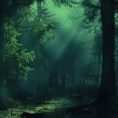Pre-Dawn Forest de Sounds Of Nature