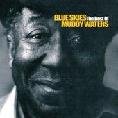 Blue Skies - The Best Of Muddy Waters de Muddy Waters
