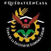 Quédate en Casa de Tuna de la Facultad de Economía UNAM