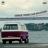 Check Your Car Speakers by Bunker Analog