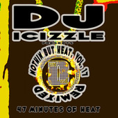 Nothin But Heat Mixtape, Vol. 17 Remixed by Various Artists