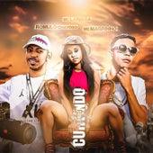 Curtindo o Baile (feat. Mc Larissa & Mc Magrinho) (Brega Funk) by Romulo Chavoso