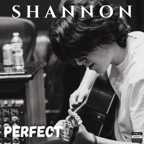 Perfect by Shannon
