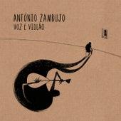 Voz E Violão de António Zambujo