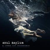 A Dream For Insomniacs by Soul Asylum