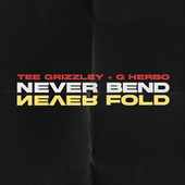 Never Bend Never Fold by Tee Grizzley