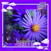 Jamming by Lana Tele