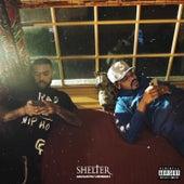SHELTER (Acoustic Version) de VIC MENSA