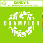 Ain't No Need To Hide (Sam Divine Remix) by Sandy B