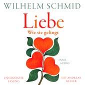 Liebe - Wie sie gelingt (Ungekürzt) von Wilhelm Schmid