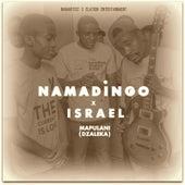 Mapulani (Dzaleka) by Namadingo