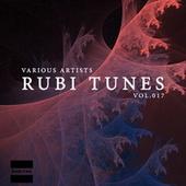 Rubi Tunes, Vol. 017 de Various Artists