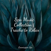 Spa Music Collection | Tracks to Relax von S.P.A