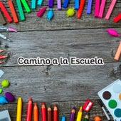 Camino a la Escuela by Various Artists