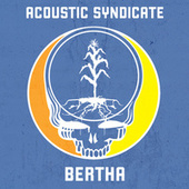 Bertha by Acoustic Syndicate
