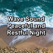 Wave Sound Peaceful and Restful Night von Baby Music (1)