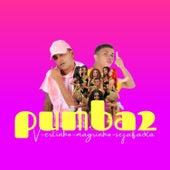 Pumba 2 (feat. Seja Fada & Mc Magrinho) (Brega Funk) by MC Vertinho