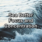Sea Better Focus and Concentration van Waves