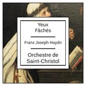 Haydn: Yeux Fâchés by Orchestre de Saint-Christol