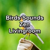 Birds Sounds Zen Livingroom by Spa Music (1)