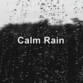 Calm Rain von Relax - Meditate - Sleep