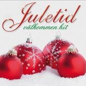 Juletid välkommen hit von Blandade Artister