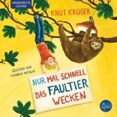 Nur mal schnell das Faultier wecken by Knut Krüger