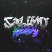 Salimo Ready by Zaid